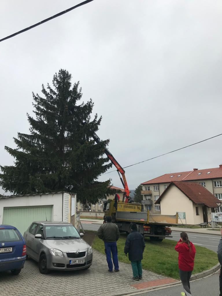 Vánoční stromek a beltém 1.12.